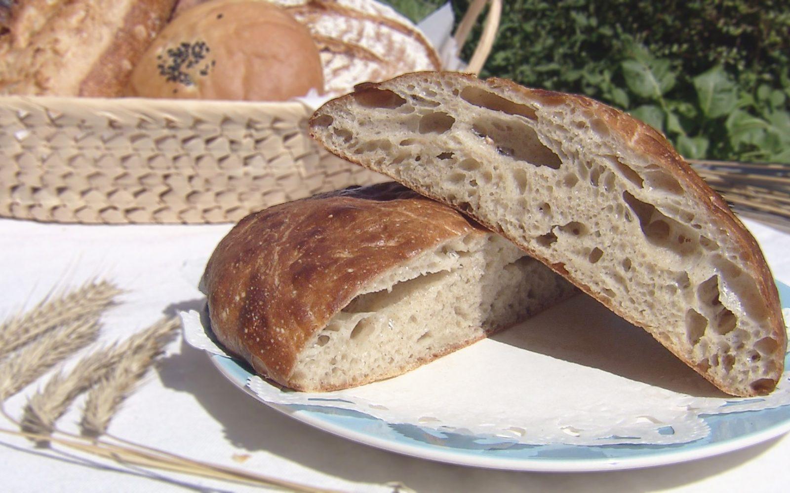 小麦のハーモニーを存分にたのしめるパン屋さん