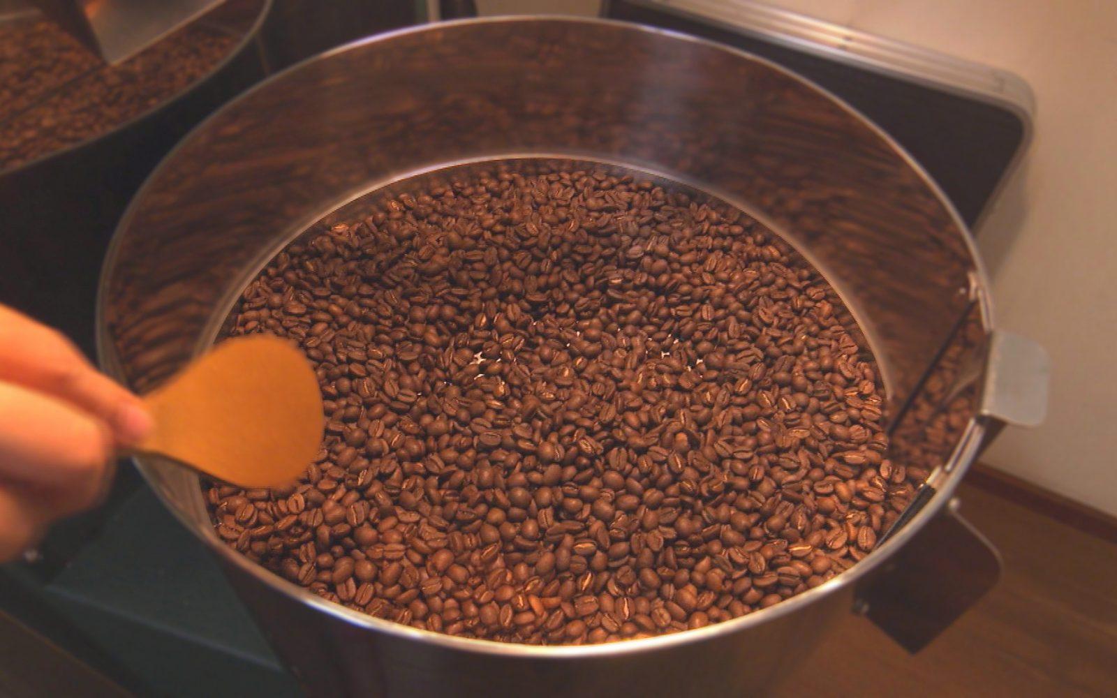 畑の中にぽつんと佇む自家焙煎コーヒー豆販売店