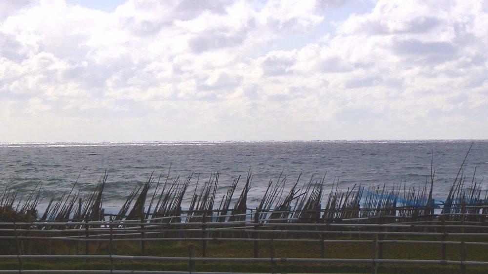 日本海を眺めながら